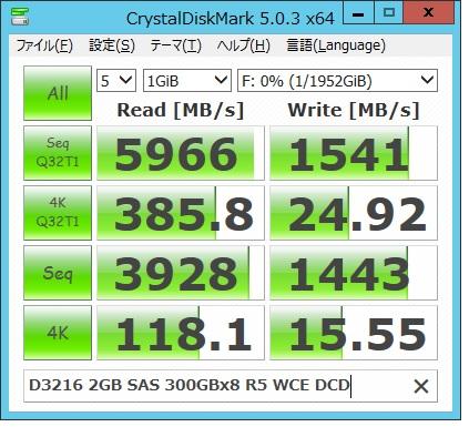 D3216 2G SAS300x8R5WCE
