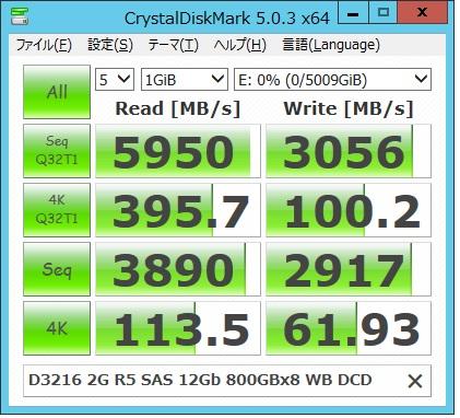 D3216 SAS SSDx8 1